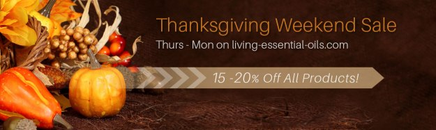 car_thanksgiving_weekend_sale__00829